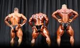 Arnold 2011