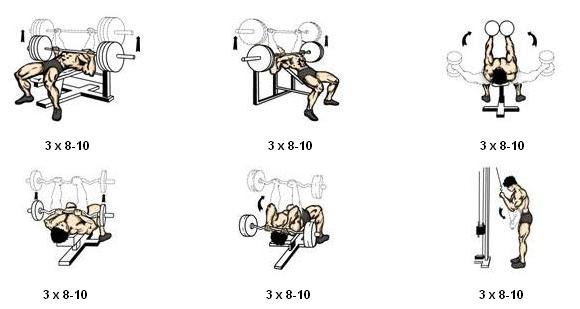 Rutina Para Pecho Y Biceps