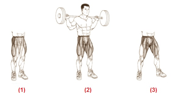 "Las paradojas de la sentadilla ""chest-up"""